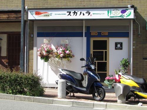 神戸元町 野菜庵 スガハラ