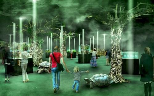 精霊の森 ELEMENTS