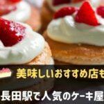 shinnagata_cake